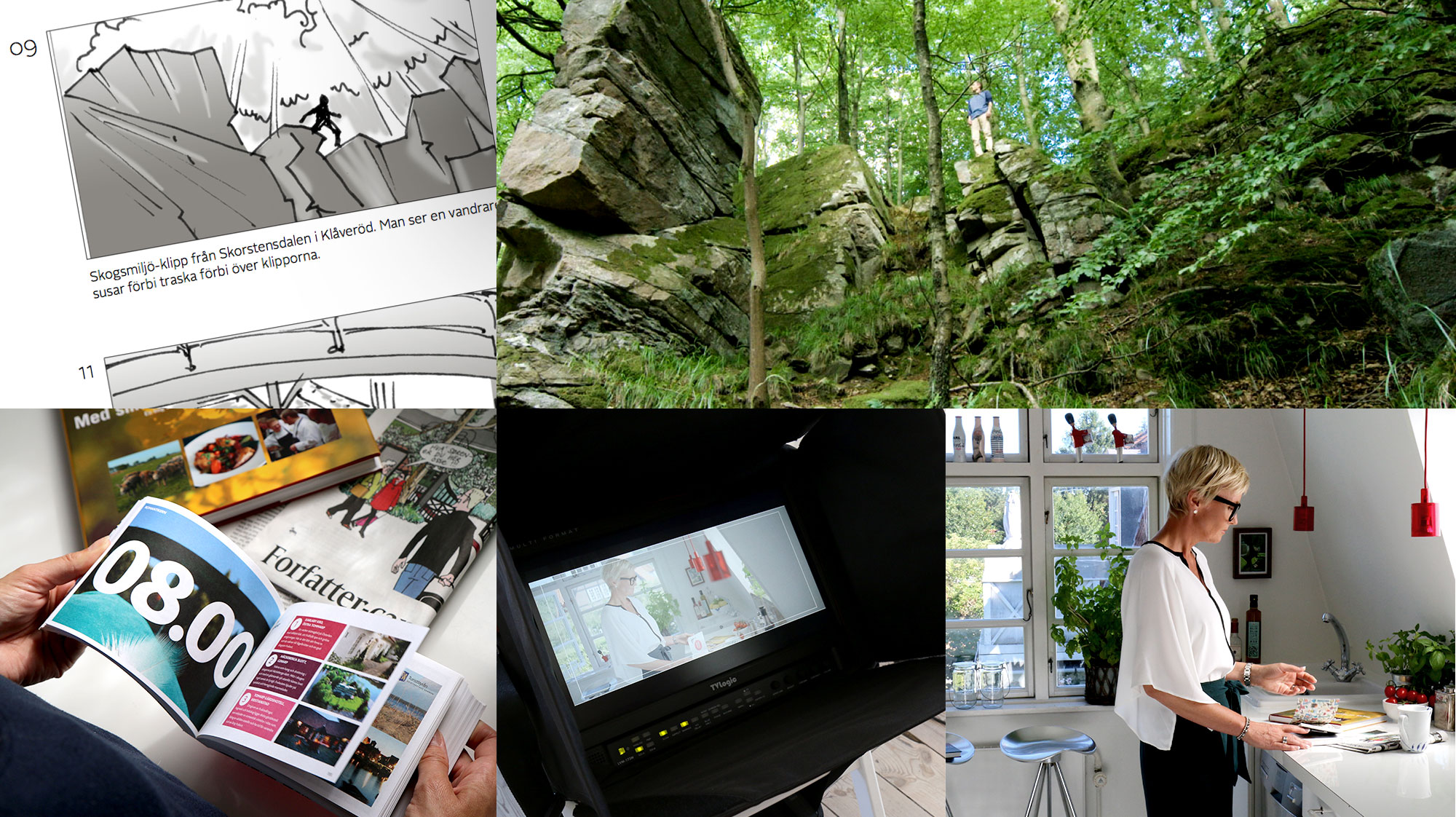 VisitSweden_smukke_Project-trivia02